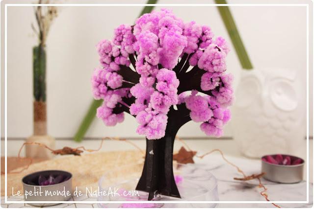 Magic Sakura :arbre miniature façon cerisier Sakura