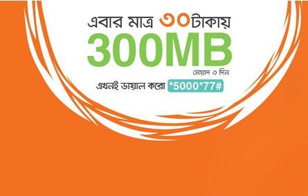bl 300 mb internet offer