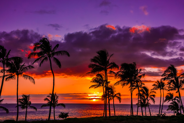 Luxury Hotel Stay in Hawaii
