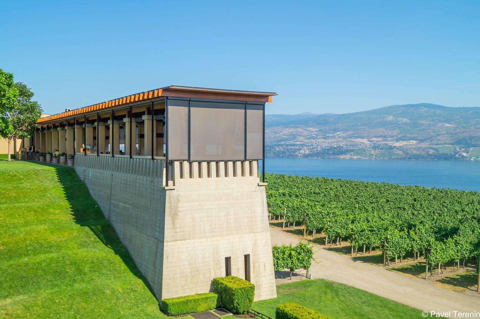 Долина озера Оканаган считается самым обширным и важным винодельческим регионом Канады