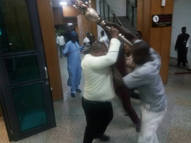 Missing mace: Senators should return home – MASSOB
