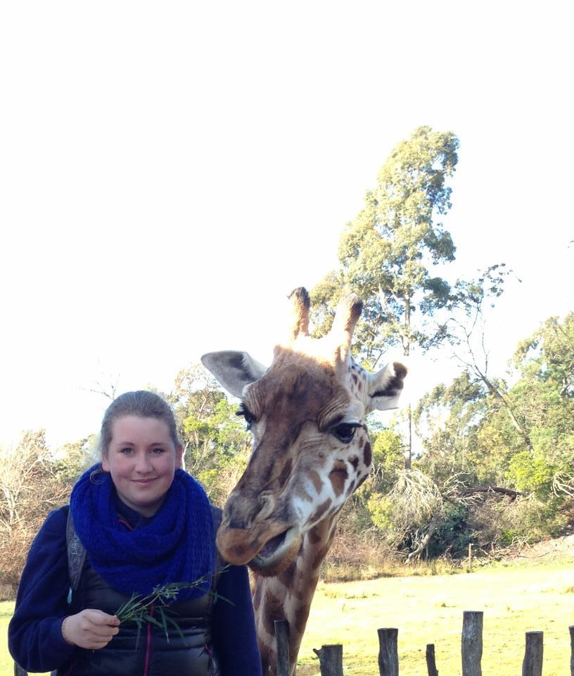giraffe macht abflug