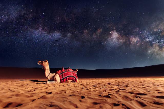 Emirados Árabes: o que você precisa saber antes de viajar para lá