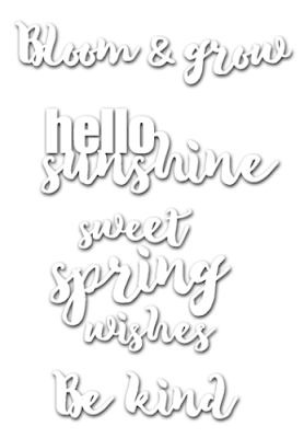 http://stamplorations.auctivacommerce.com/Set-of-4-Sweet-Spring-Phrase-Dies-CUTplorations-P5683774.aspx