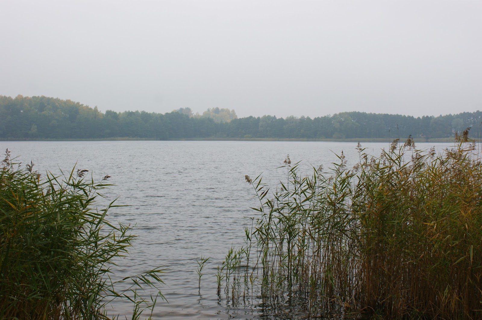 wycieczka, wyjazd, Polska, jezioro, podróże, pomorze