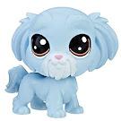 Littlest Pet Shop Series 1 Family Pack Gruff Malteaser (#1-111) Pet
