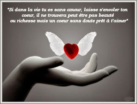 Citations Option Bonheur Si Tu Es Sans Amour