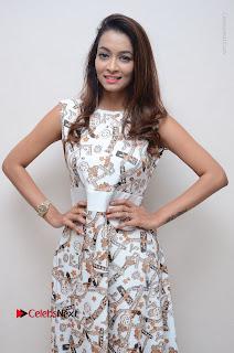 Telugu Actress Reshmi Thakur in Long Dress at Plus One ( 1) Audio Launch  0031.jpg