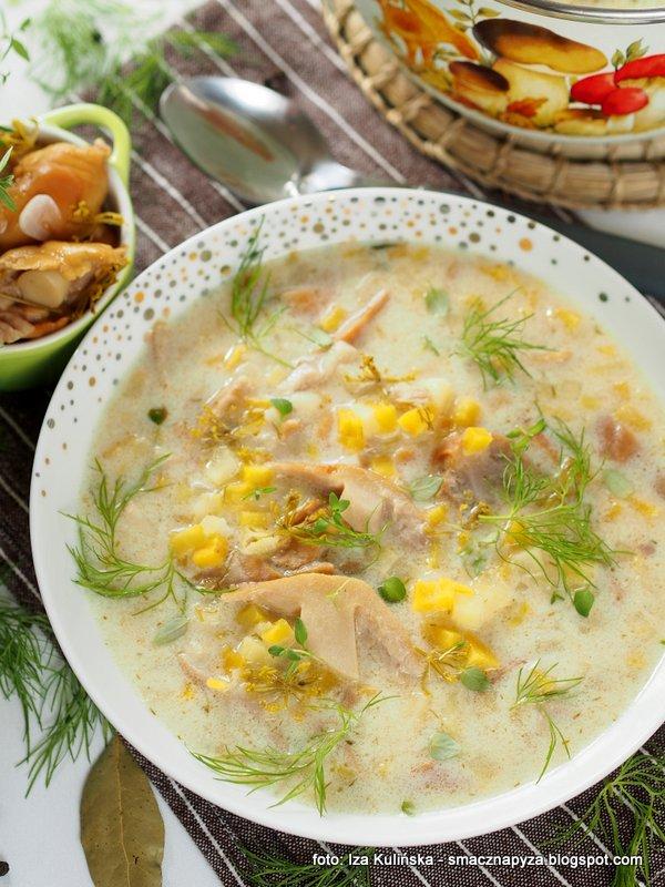 zupa z kiszonymi plachetkami, kwasna zupa grzybowa, kiszone grzyby, zupa dnia, niemki, turki, obiad domowy