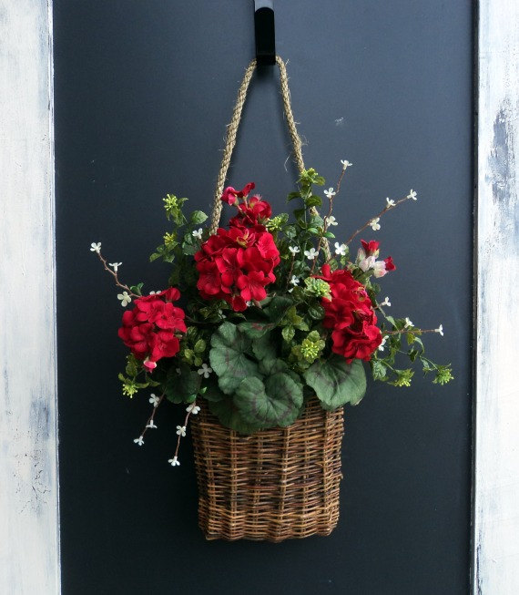 Front Door Baskets: Lucys Garden: MY GERANIUM DILEMMA