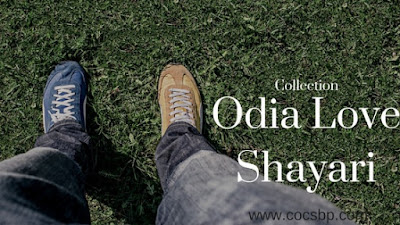 Best Odia Love Shayari Collection for Anchoring