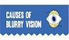 Worried About Blurry Vision? Know the Facts #infographic