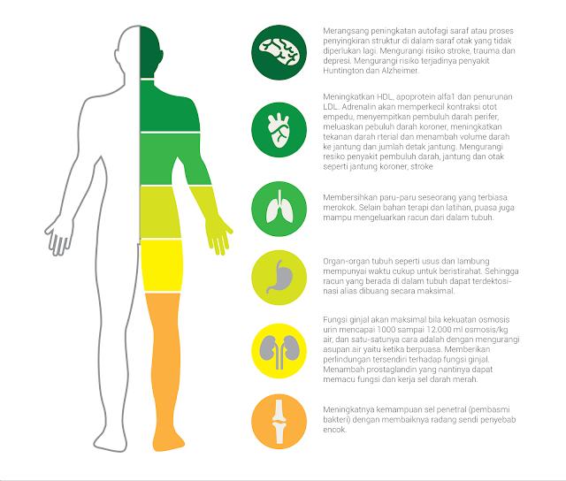 manfaat puasa untuk kesehatan tubuh