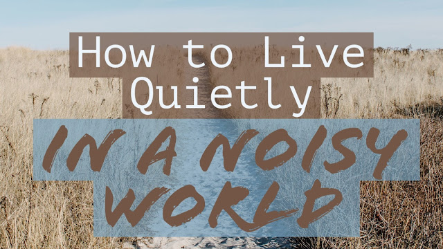 How to Live Quietly in a Noisy World  John Miller Johnthemiller.com