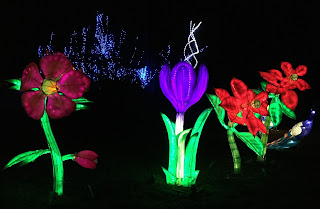 Pic of colourful Chinese flower lanterns