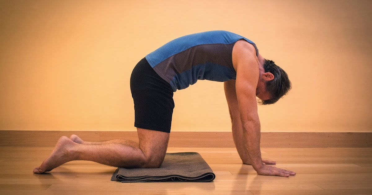 yoga for healthy aging featured pose dynamic cat cow