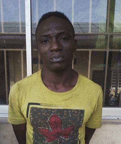 nigerian cross border robber