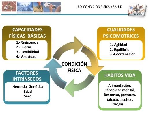 elementos basicos de la condicion fisica