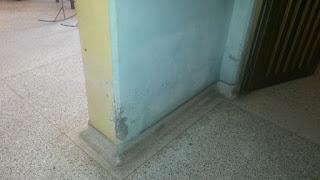 humedad en las paredes internas