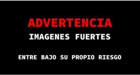 Fotografías, 20 sicarios muertos en Veracruz tras enfrentamientos con Fuerzas Federales