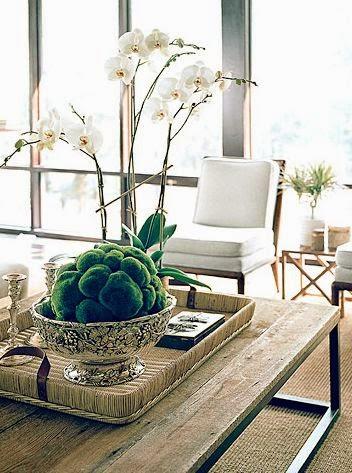Interior Design Expert Vancouver