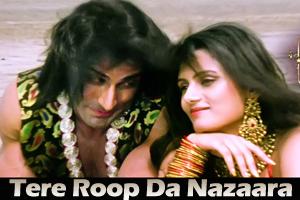 Tere Roop Da Nazaara