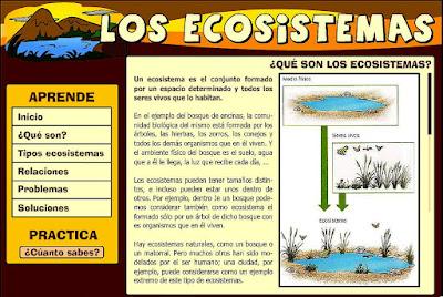 http://chuegos.ftp.catedu.es/kono/sexto/t1/eco2.swf