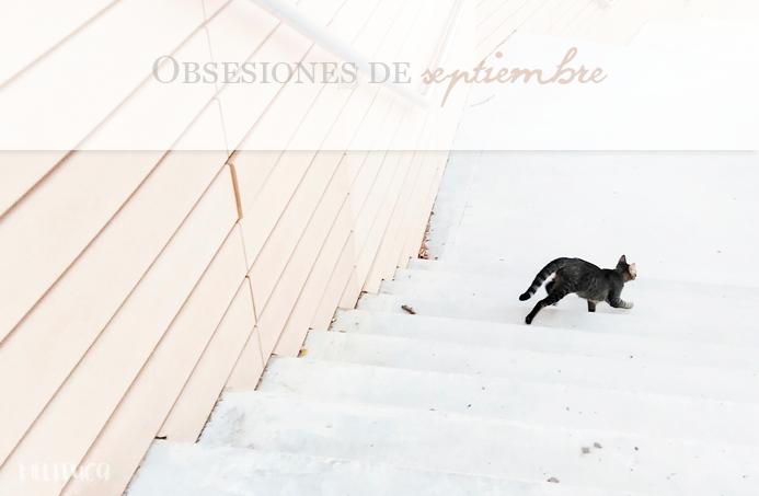 obsesiones septiembre
