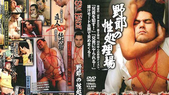 SM BAdi Vol 2 – Yarou Version
