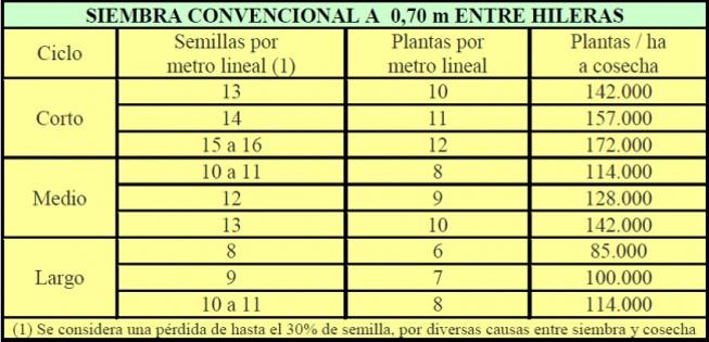 Produccion de ma z a doble hilera acolchado y con for Densidad de siembra de tilapia