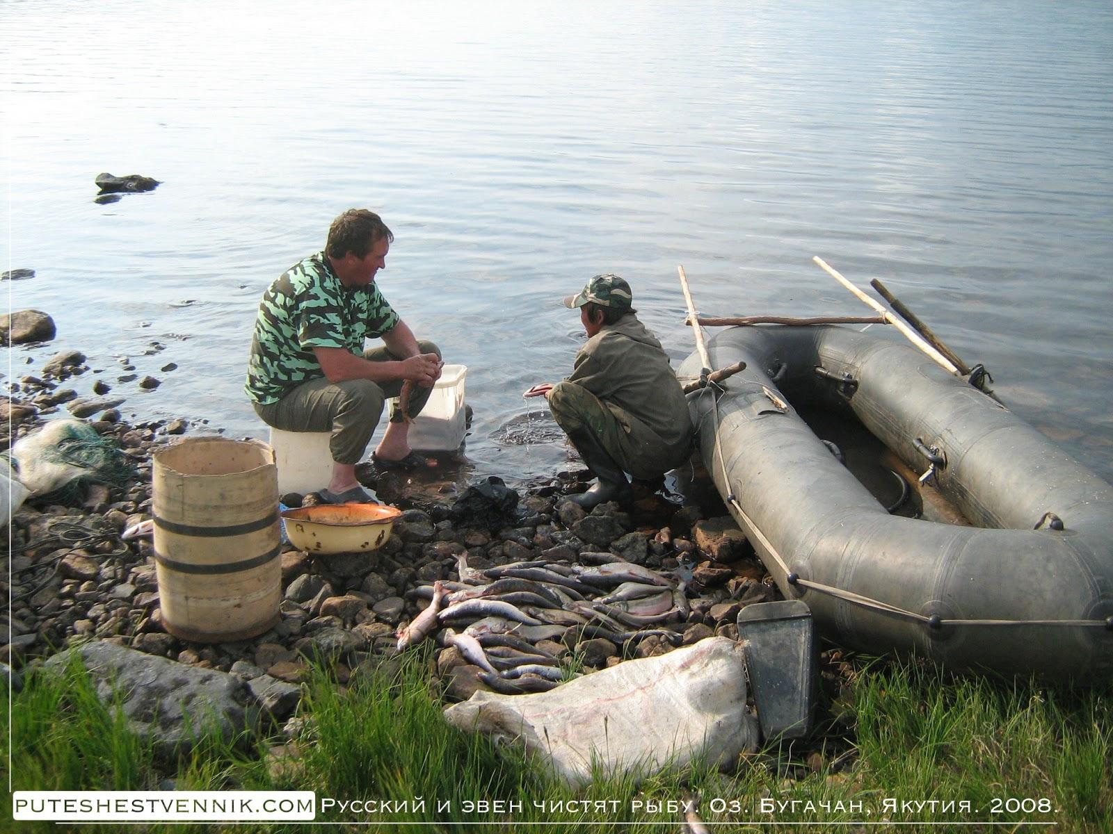 Эвен и русский чистят рыбу