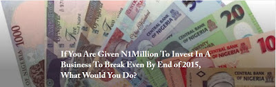 http://thenakedconvos.com/if-you-are-given-n1million-to-invest-in-a-business-to-break-even-by-end-of-2015-what-would-you-do/