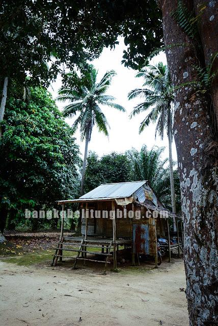 rumah-adat-pulau-bangka-belitung