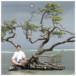 yoga, meditacion, yoga aereo aeroyoga, meditation, mindfulness, columpio, fly, flying, estres, ansiedad, salud, wellness, bienestar, ejercicios, cursos, teacher training, formacion