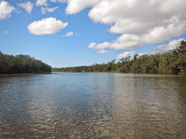 El rio Daintree