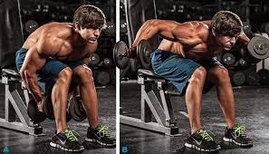 Seated Bent Over Rear Delt Raise