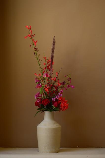 desert garden, small sunny garden, amy myers, monday vase meme