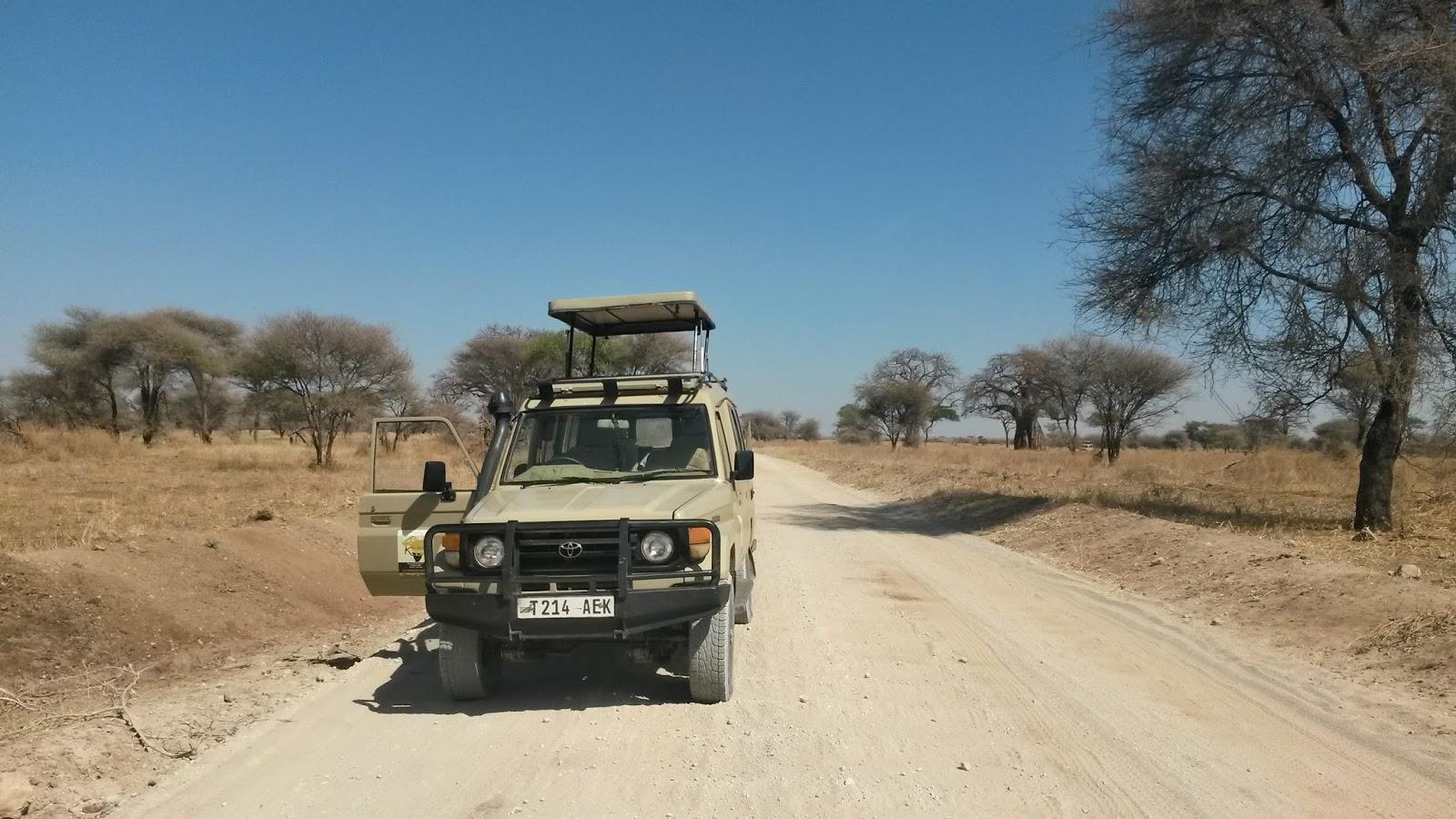 serengeti safari tanzanya