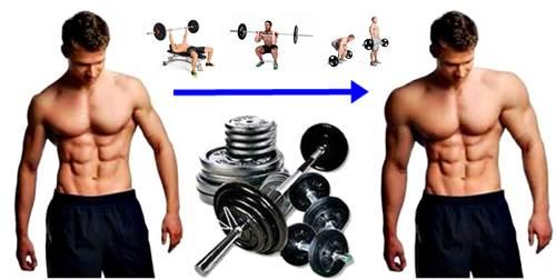 Rutina de ejercicios con pesas para ectomorfos para aumentar el volumen muscular