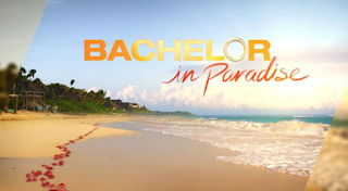 "Bachelor in Paradise' Suspended Over ""Allegations of Misconduct"" on Set"
