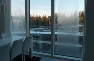 Rosa na szkle – jak radzić sobie zimą z zaparowanymi oknami