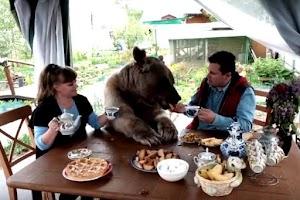 Dá pra acreditar: Casal convive há 23 anos com um urso de estimação !