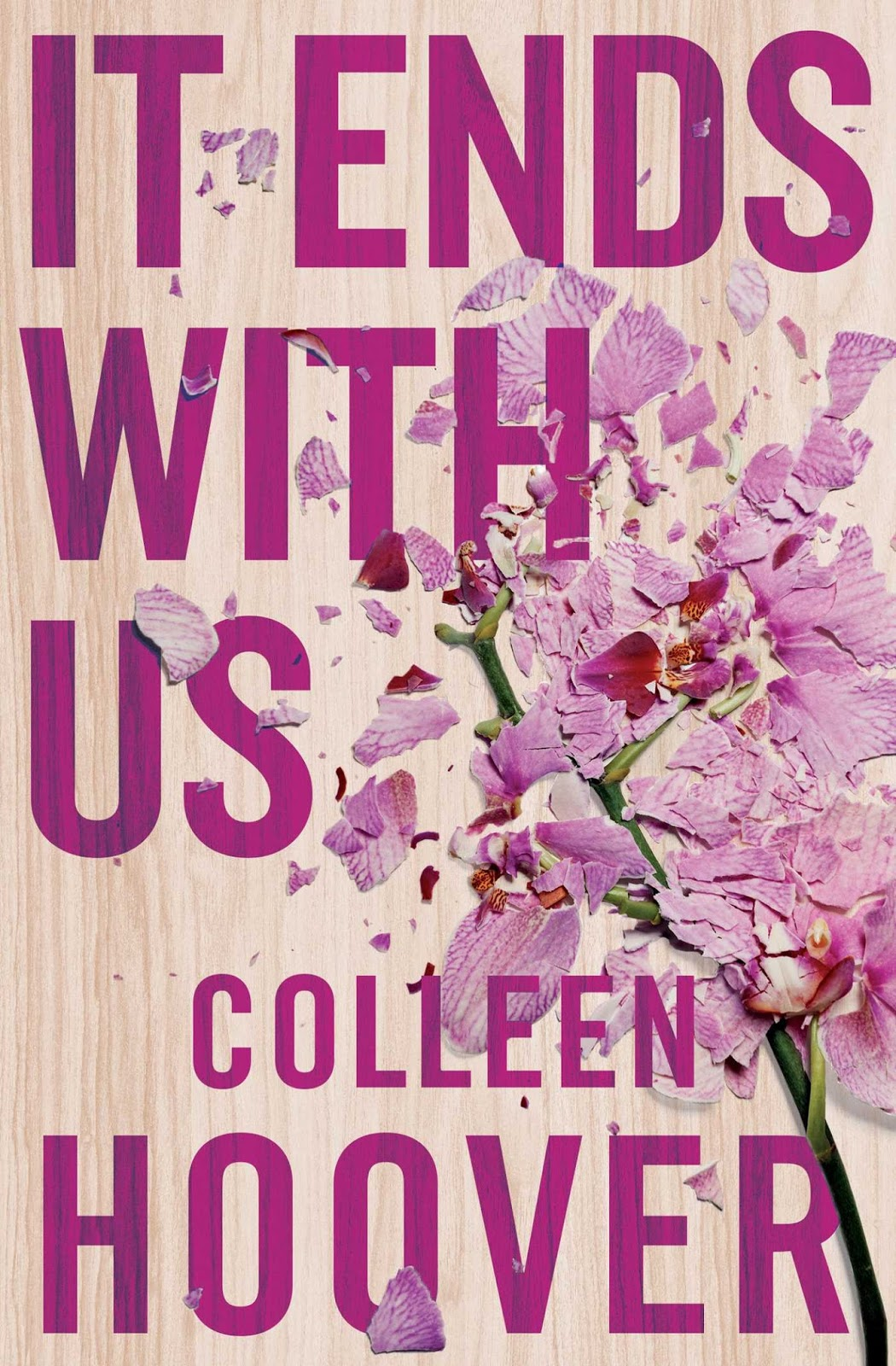 It Ends With Us Colleen Hoover cover