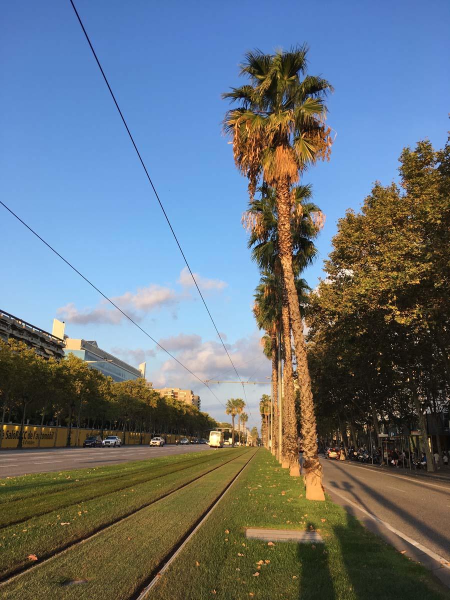 en la Av. Diagonal de Barcelona. Octubre 2018