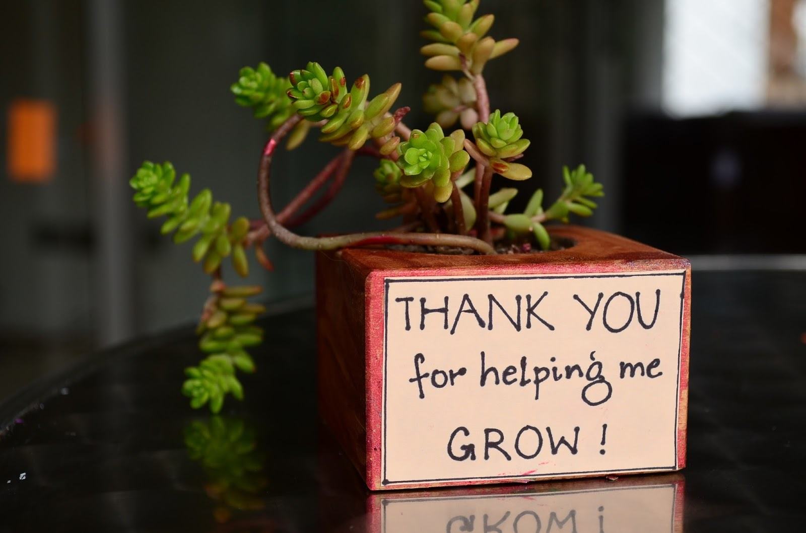 The Practical Mom:Teacher Appreciation Gifts: Let Little Kids add their Personal Touch