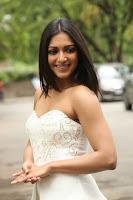Catherine Tresa Latest Photos at Gautam Nanda Teaser Launch TollywoodBlog