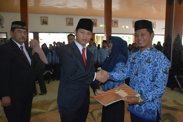Plt. Bupati Nur Arifin Serahkan SK Pengangkatan CPNS Menjadi PNS Bidan PTT dan Penyuluh Pertanian