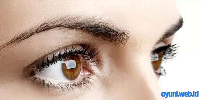 Bagaimana Cara Menjaga Kesehatan Mata