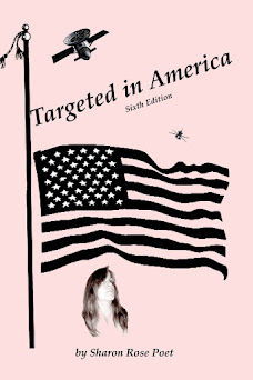 Targeted in America Book