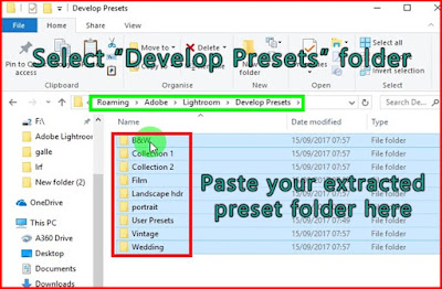 Paste your presets to Lightroom developed preset folder